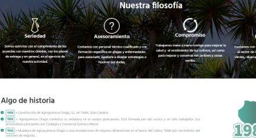 Diseño Web Grupo Drago