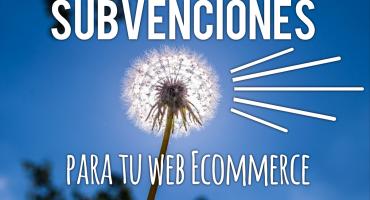 Subvenciones para tu web ecommerce