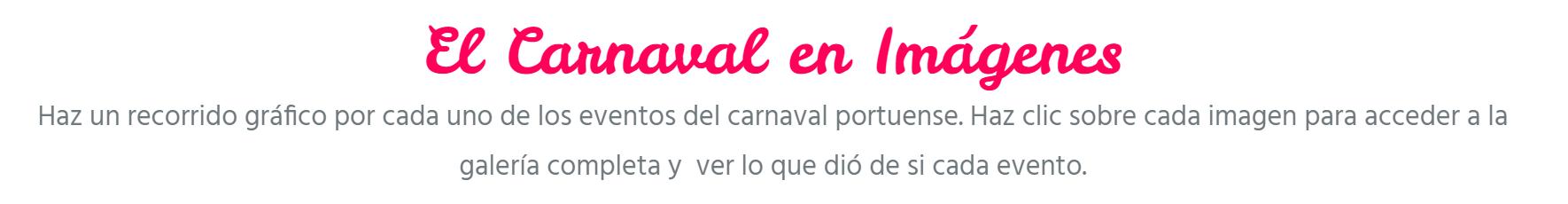el carnaval en imagenes galeria de fotos