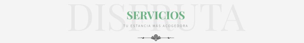ejemplo banner servicios