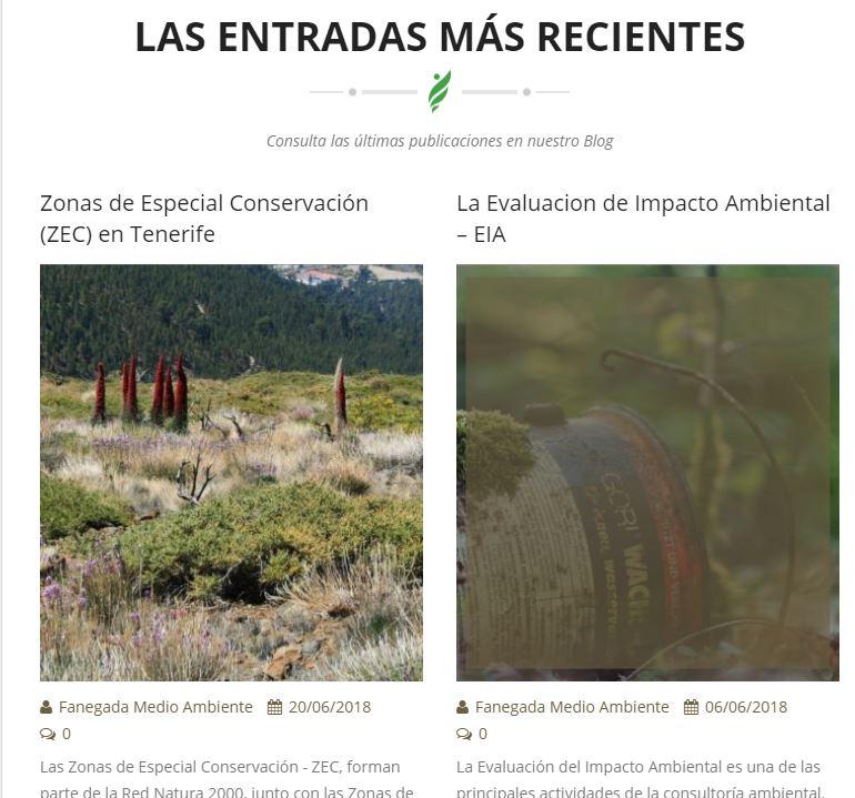 blog fanegada