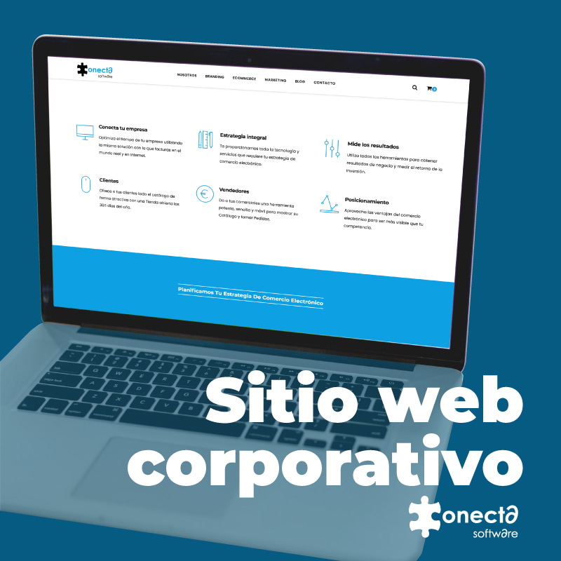conectasoftware - Web Corporativa